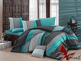 Семейный комплект постельного белья - ренфорс с компаньоном R7442
