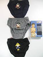 Трусы для мальчиков, в коробочке по 3 шт одного размера, размер 7/8, лет, арт. А 005