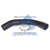 Патрубок радиатора (5010514144 | 079.126)