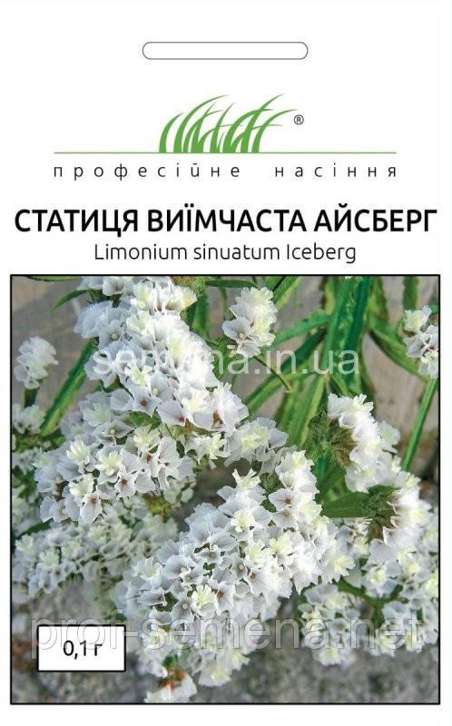 Статиця Айсберг біла 0,1 г (кермек).