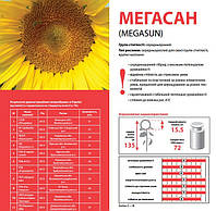 Семена подсолнечника Лимагрейн Мегасан (Limagrain Megasun)