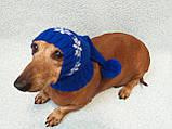 Шапка Санты для собаки вязанная универсальная, фото 4