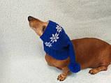 Шапка Санты для собаки вязанная универсальная, фото 5