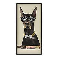 Картина Frame Art Cool Dog 121x61cm