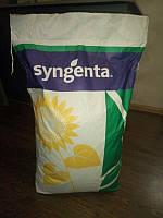 Семена подсолнечника НК Фортими