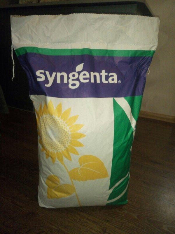 Семена подсолнечника Субаро (syngenta)
