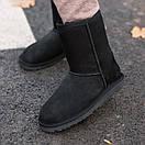Зимние Угги UGG Classic Short II Boot, фото 2
