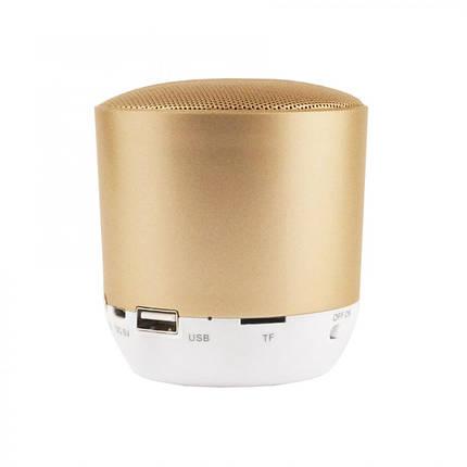Акустична система Hopestar H9 (gold), фото 2