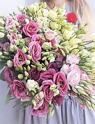 Букет из эустомы бело розовый - омбре