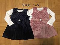 Набор 2 в 1 утепленный для девочек, F&D, 1,4 лет,  № 9768
