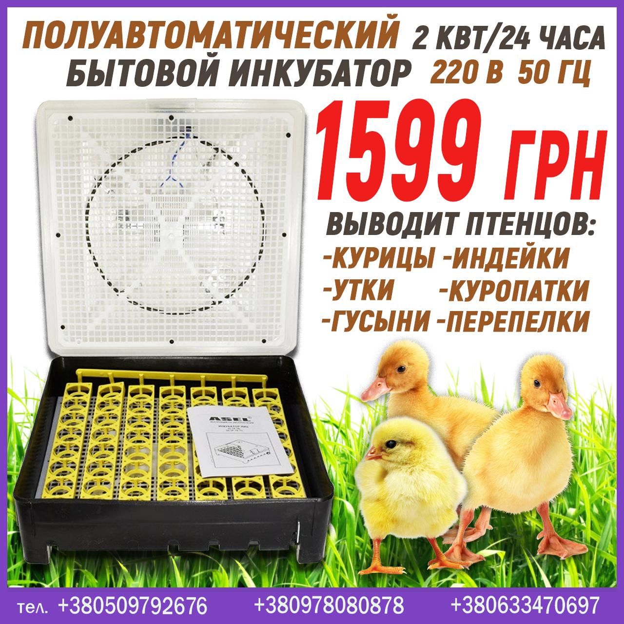 Полуавтоматический инкубатор на 56 яиц