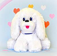 Мягкая игрушка белая cобака , 29 х 32 см,, фото 1