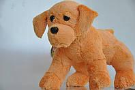 Мягкая игрушка . Собака рыжий 30 х 40, фото 1