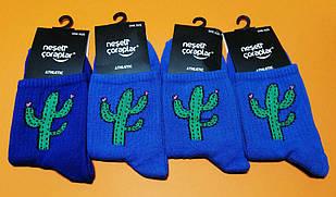 Шкарпетки Neseli Кактус