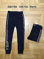 Спортивные штаны на меху для девочек, Grace, 134,140,146,152,158,164 см,  № G84769