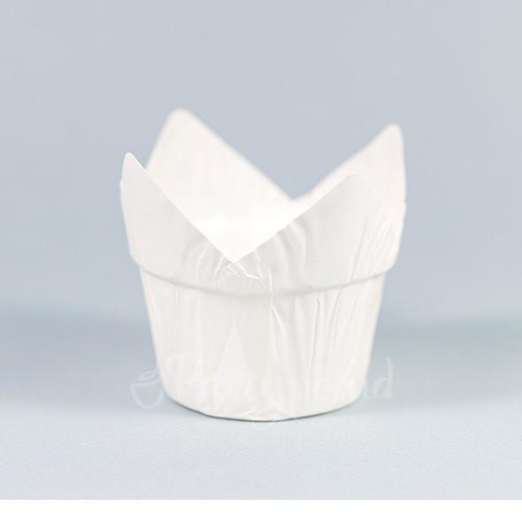 Капсула тюльпан белая