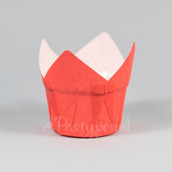 Капсула тюльпан красная