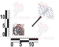 Грибок для бескамерных шин до 4 атм d7х45мм (розн)