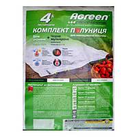 Комплект для клубники Agreen