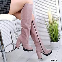 Женские cапоги натуральная замша до колена цвет пудра 16\к-1276-1, фото 3