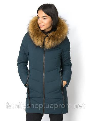 Женская зимняя куртка  с натуральным мехом енота, фото 2