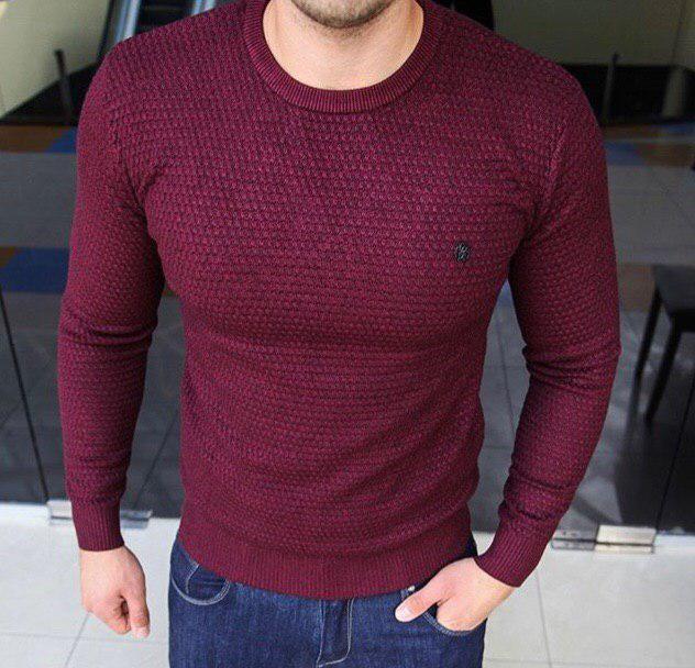 Свитшот мужской Roberto Сavalli D8426 бордовый