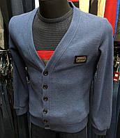 Кофта мужская Philipp Plein D8570 синяя