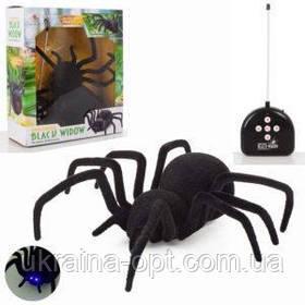 Радиоуправляемый паук Черная вдова (Black Widow 779)на пульте управления