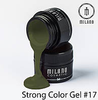 Strong Color Gel 17
