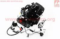 Двигатель мотоциклетный в сборе CGT-175cc (водяное охлаждение) + карбюратор, коммутатор, катушка зажигания, реле: стартера, напряжения, фото 1