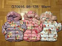 Куртка утепленная для девочек, Grace, 98,104 см,  № G70916