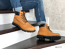 Мужские зимние ботинки Timberland,Тимберленд,рыжие, фото 3