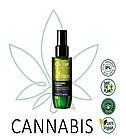 Масло відновлення з каннабісом Oyster Cannabis 100 мл, фото 2