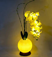 Ночник Орхидея с LED-подсветкой Bing Rong 1502467, фото 1