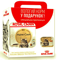 Royal Canin MAINE COON Adult 2 кг + 3 пауча Royal Canin MAINE COON Adult 85 г