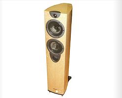 Напольная акустика Wharfedale Evo2-40