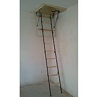 Складная  лестница по размерам заказчика (Украина)