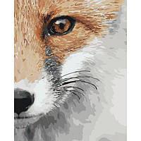 Картина по номерам Хитрый зверь  КНО4065 Идейка 40x50см