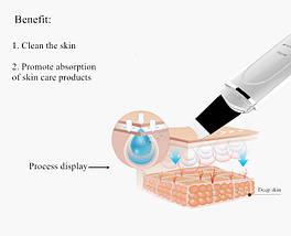 Ультразвуковой скрабер TouFo Face Skin Care Tools, фото 3