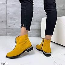 Желтые замшевые ботинки, фото 3