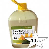 Гербицид Евро-Лайтинг Басф 10л имазапир (15 г / л) + имазамокс (33 г / л)