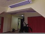 Потолочный инфракрасный обогреватель Теплоv Б600, фото 4