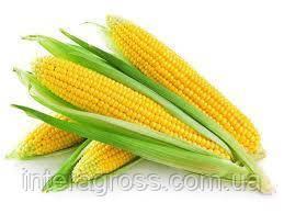 Купить Семена кукурузы Адевей