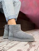 Женские ботинки UGG (Натуральная овчина)