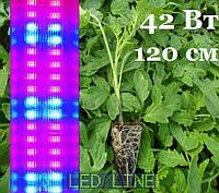 LED Фитосветильник для растений 1200мм 42 Вт T8-IP20-1.2L 42W R:B=4:2 4 красных 2 синих