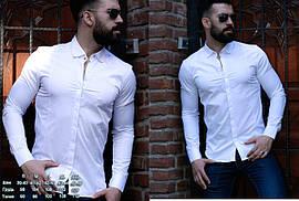 Белая строгая приталенная рубашка с классическим воротом