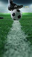 Футбол 18 вафельная картинка