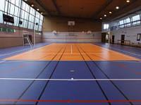 Tarkett Omnisports V35 ROYAL BLUE спортивный линолеум