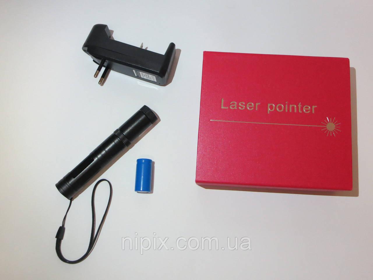 Лазерная указка Laser Pointer 800 mW