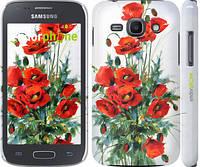 "Чехол на Samsung Galaxy Ace 3 Duos s7272 Маки ""523c-33"""